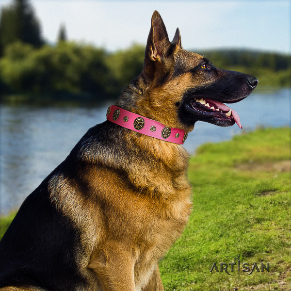 German Shepherd Dog exquisite adorned full grain natural leather dog collar for daily use