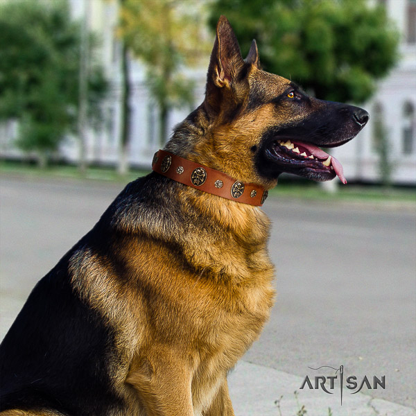 German Shepherd Dog incredible decorated full grain natural leather dog collar for comfy wearing