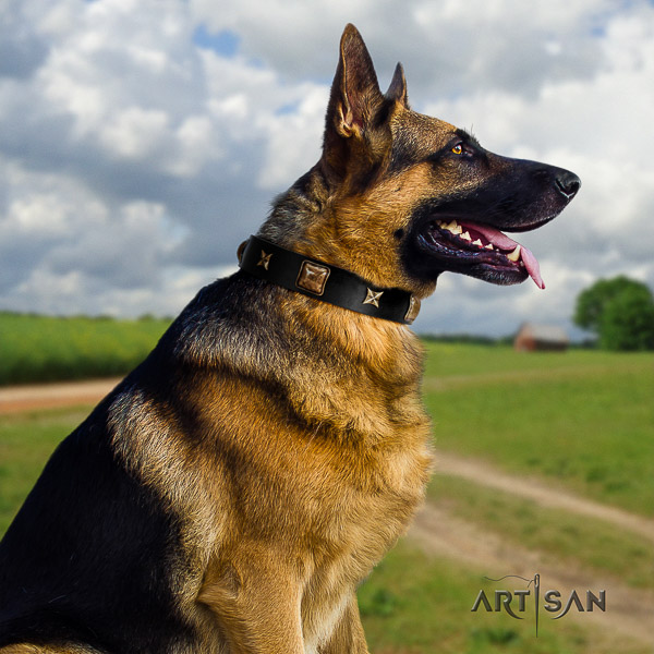 German Shepherd Dog impressive adorned natural leather dog collar for daily use