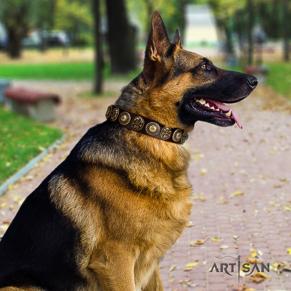 German-Shepherd Dog stunning adorned natural leather dog collar for comfortable wearing