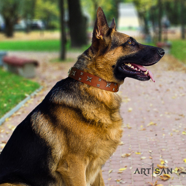 German-Shepherd Dog stunning decorated full grain leather dog collar for daily walking