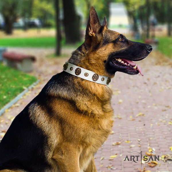 German-Shepherd Dog trendy adorned leather dog collar for everyday walking