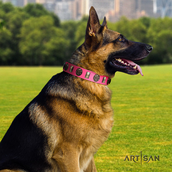 German Shepherd Dog extraordinary embellished full grain genuine leather dog collar for comfy wearing