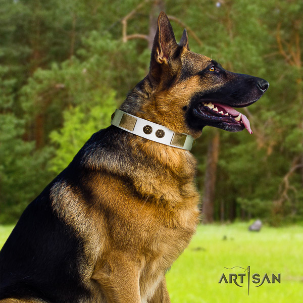 German-Shepherd Dog exceptional adorned full grain natural leather dog collar for everyday use