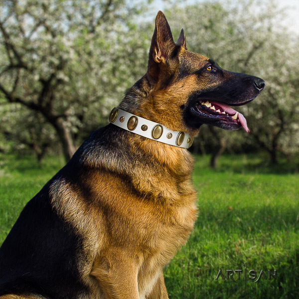 German Shepherd Dog unique adorned full grain leather dog collar for daily use