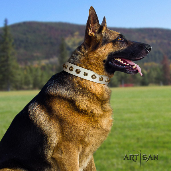 German Shepherd Dog awesome studded natural leather dog collar for easy wearing