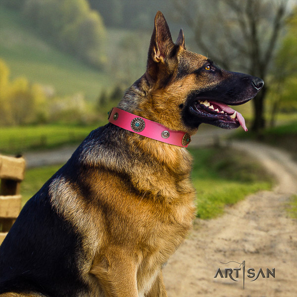 German Shepherd Dog exquisite embellished full grain natural leather dog collar for daily use