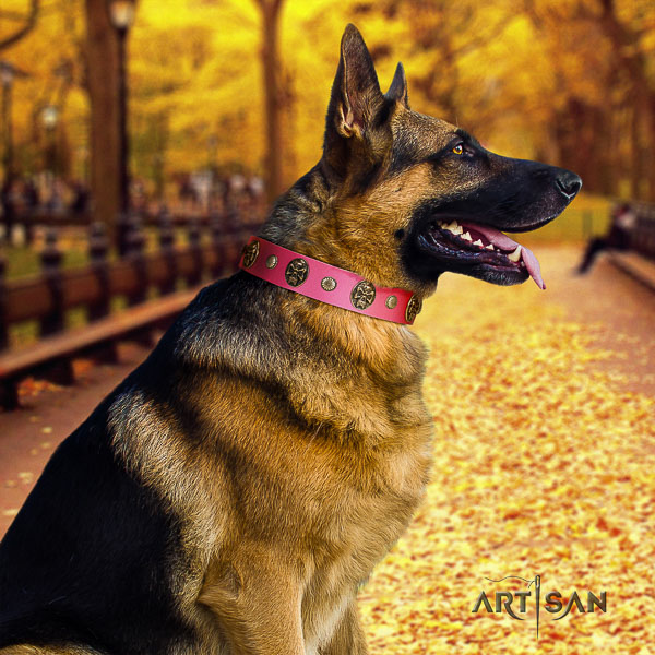 German-Shepherd Dog exceptional decorated full grain leather dog collar for easy wearing
