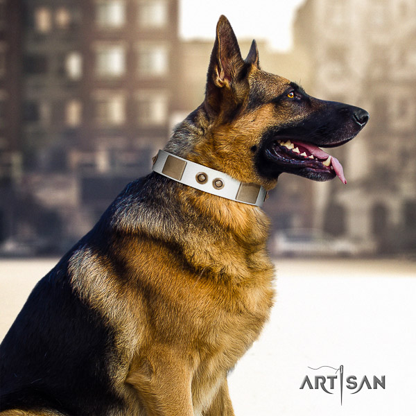 German Shepherd Dog incredible embellished genuine leather dog collar for daily use
