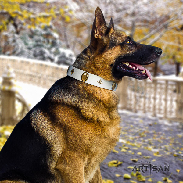 German Shepherd Dog remarkable adorned genuine leather dog collar for stylish walking