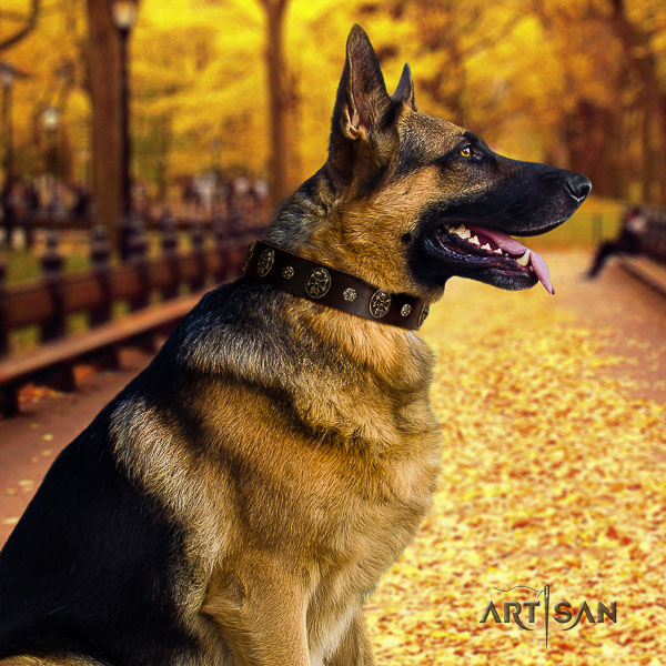 German Shepherd Dog unusual decorated full grain genuine leather dog collar for handy use