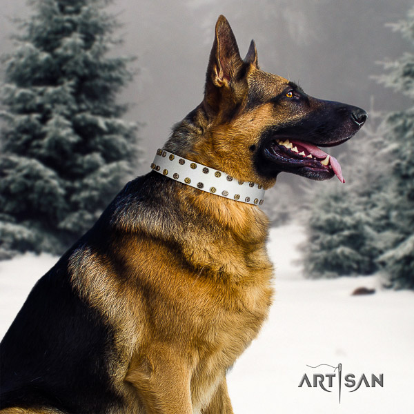 German-Shepherd Dog significant embellished natural leather dog collar for comfy wearing