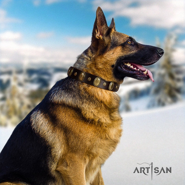 German Shepherd Dog fashionable decorated full grain natural leather dog collar for comfy wearing