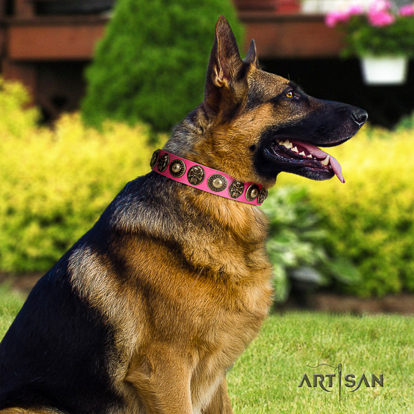 German-Shepherd Dog awesome studded full grain genuine leather dog collar for easy wearing