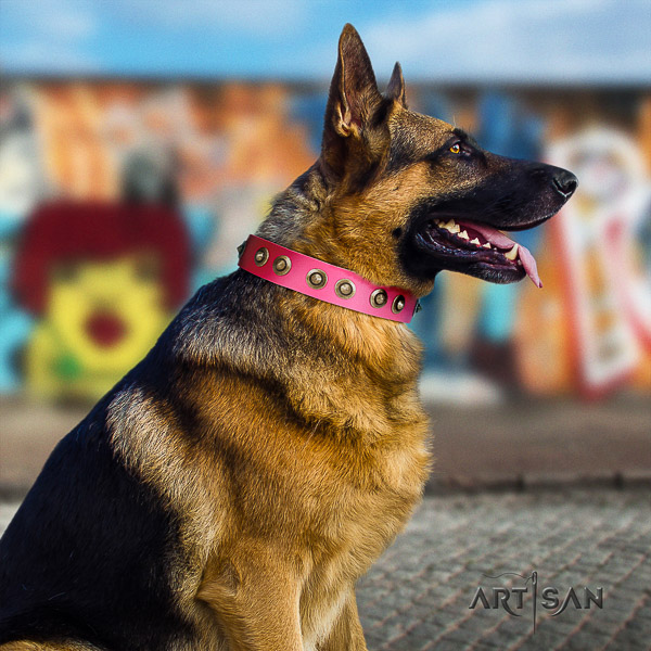 German-Shepherd Dog stylish design decorated full grain genuine leather dog collar for daily use