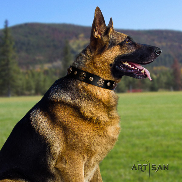 German Shepherd Dog exquisite embellished natural leather dog collar for comfortable wearing