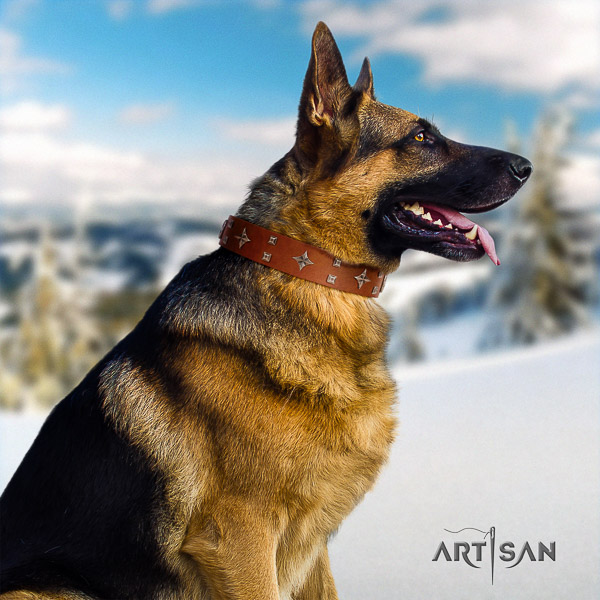 German Shepherd Dog amazing decorated full grain leather dog collar for fancy walking