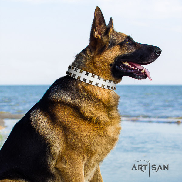 German Shepherd Dog stylish decorated full grain natural leather dog collar for fancy walking