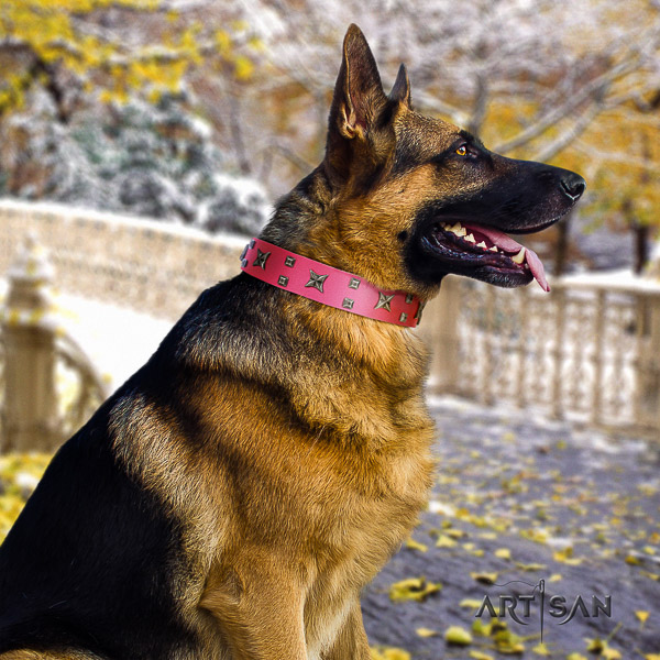 German Shepherd Dog exquisite studded full grain genuine leather dog collar for handy use