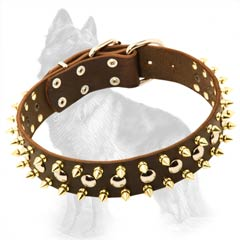 German-Shepherd Leather Dog Collar with 2 Rows of Brass  Spikes and 1 Row of Nickel Half-Ball Studs