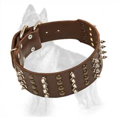 German Shepherd Leather Dog Collar with Nickel Covered  Spikes, Buckle, D-Ring and Brass Studs