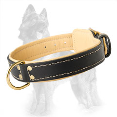 Reliable Leather German Shepherd Dog Collar Equipped  With Brass Fittings