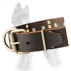Exclusive Design Leather German Shepherd Dog Collar  With Nickel Covered Hardware And Old Brass Plates