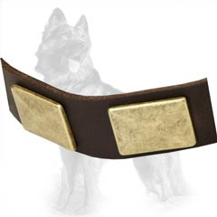 Leather German-Shepherd Dog Collar Equipped With Nickel Covered Hardware