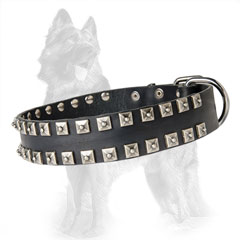 German-Shepherd Leather Dog Collar with Massive D-Ring  near Buckle