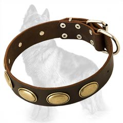 Over 20 sizes Leather Collar Decorated with Vintage Oval Old Brass Plates