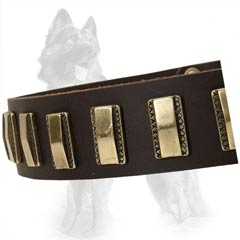 German Shepherd Leather Dog Collar Decorated