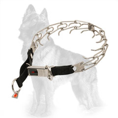 German Shepherd Pinch Collar Herm Sprenger with Click Lock System