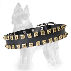 German Shepherd Studded Dog Collar with Caterpillar  Design