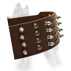 German Shepherd Leather Dog Collar Strap with Hand Set  Nickel Covered Spikes and Brass Studs