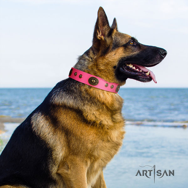 German-Shepherd easy to adjust collar with unusual adornments for your doggie