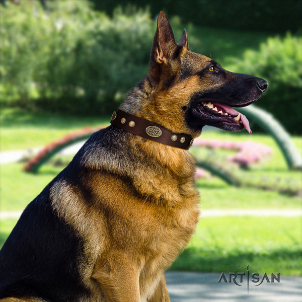 German Shepherd handmade collar with stylish design embellishments for your pet
