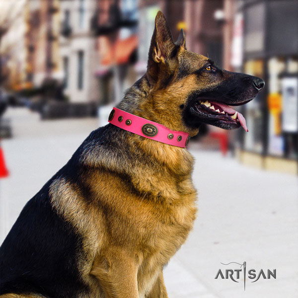 German Shepherd comfortable collar with incredible embellishments for your canine