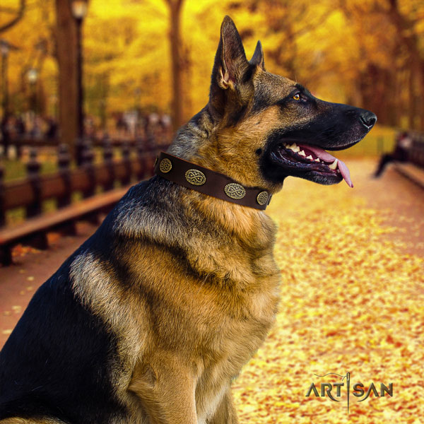 German-Shepherd easy to adjust collar with awesome embellishments for your four-legged friend