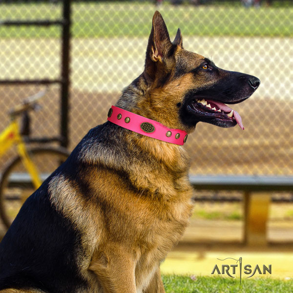 German Shepherd easy wearing collar with impressive adornments for your doggie