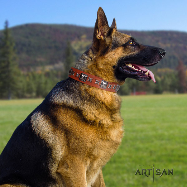 German Shepherd easy wearing collar with significant embellishments for your dog