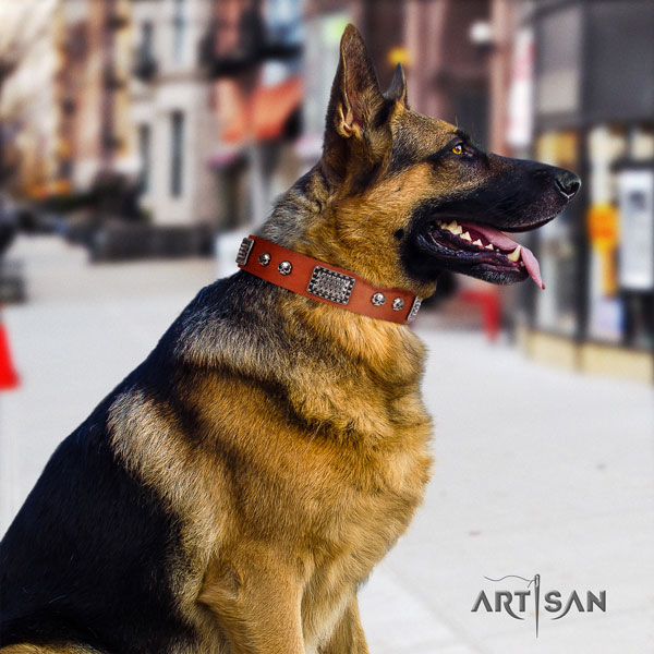 German Shepherd easy adjustable collar with significant decorations for your doggie