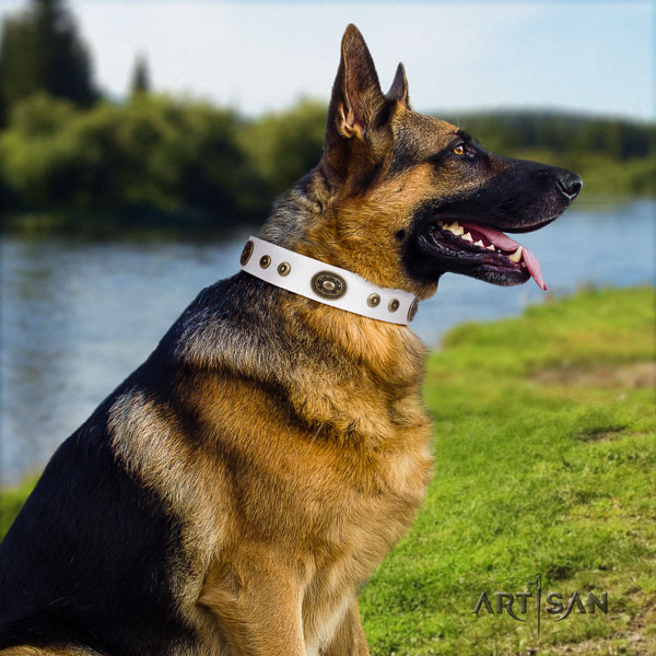 German Shepherd easy to adjust collar with exceptional decorations for your four-legged friend