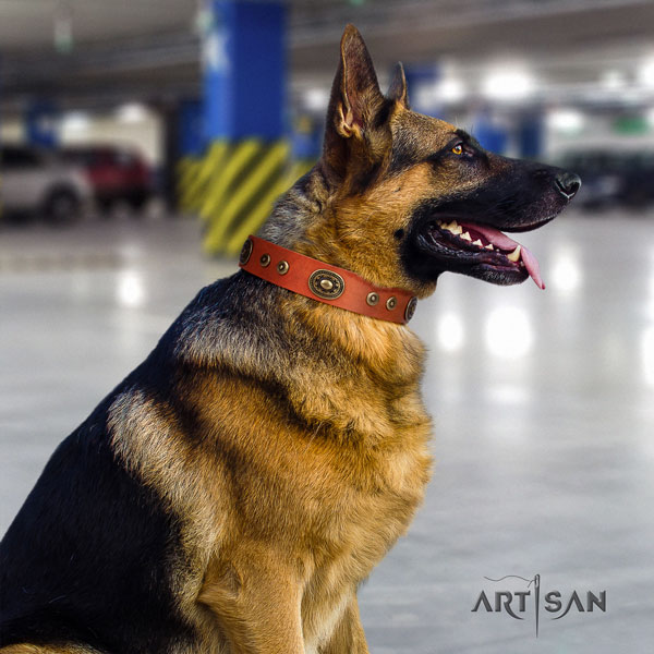 German Shepherd adjustable collar with stunning embellishments for your four-legged friend