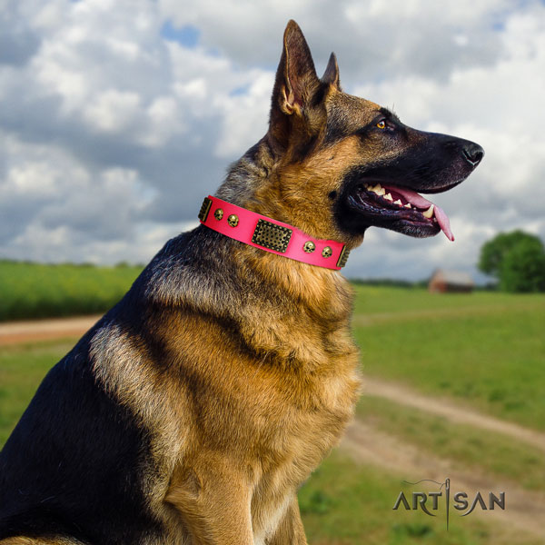 German-Shepherd comfortable collar with stylish adornments for your pet