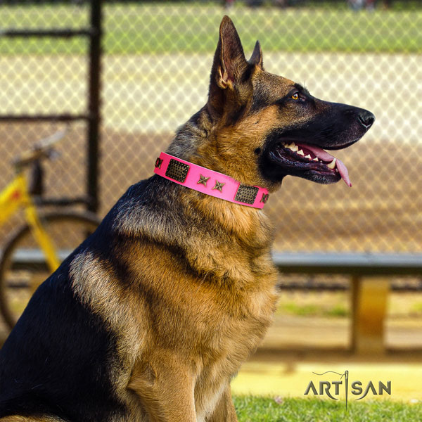 German-Shepherd perfect fit collar with stylish decorations for your dog