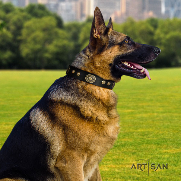 German Shepherd easy to adjust collar with trendy adornments for your dog