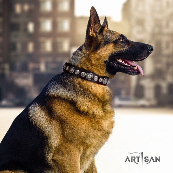 German Shepherd easy adjustable collar with amazing adornments for your doggie