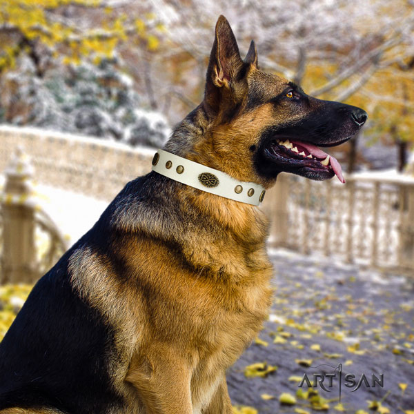 German-Shepherd easy wearing collar with amazing adornments for your canine