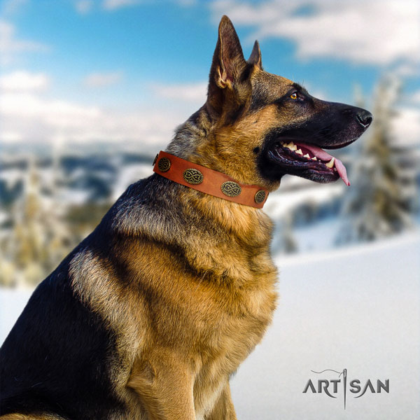 German Shepherd handmade collar with significant embellishments for your four-legged friend
