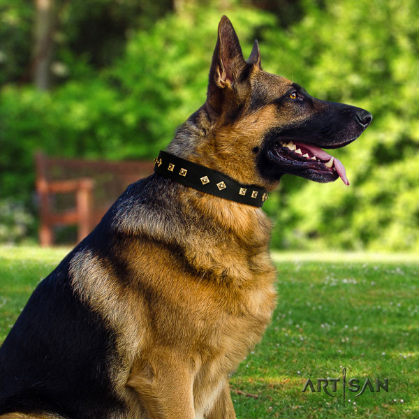 German Shepherd comfortable collar with remarkable adornments for your doggie